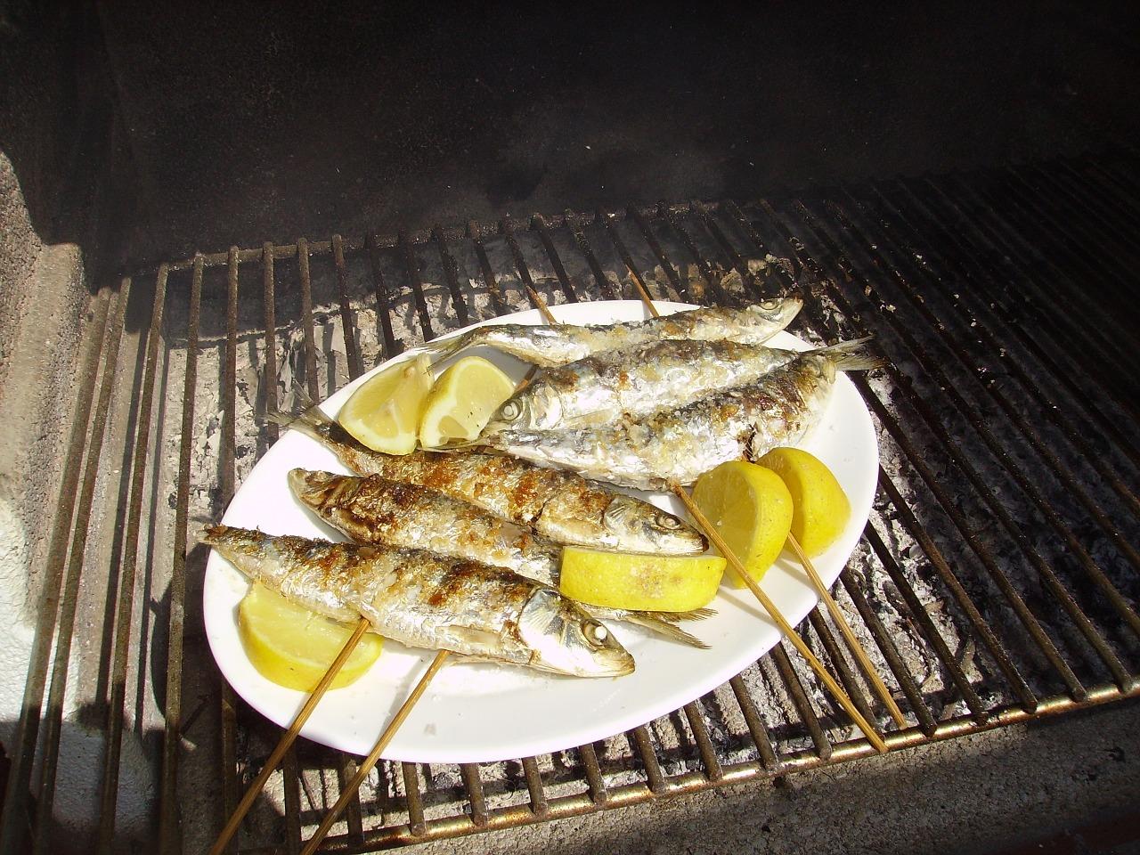 sardines-907775_1280